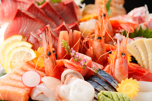 お刺身充実!旬の魚を堪能コース