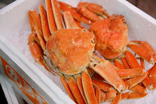 ずわい蟹を買って冬の素材を満喫するプラン